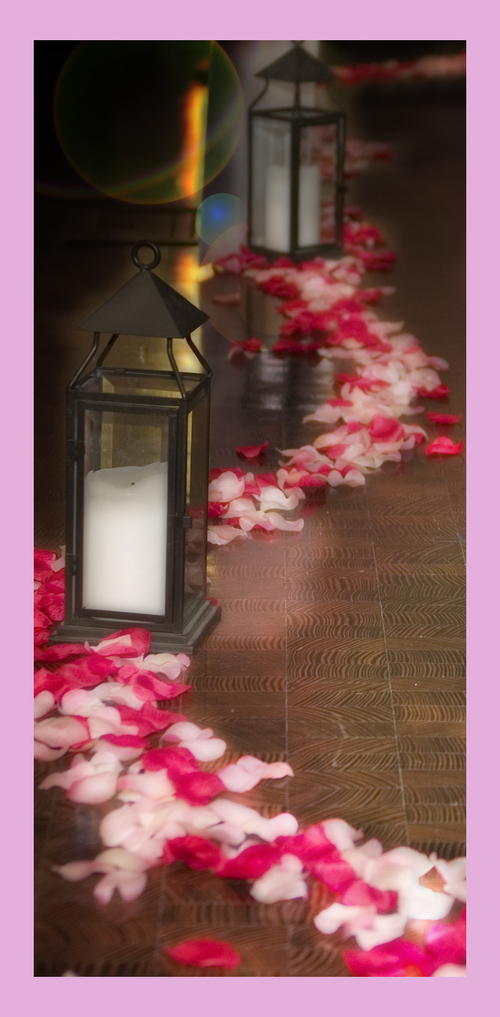 A beautiful aisle accented by pink and red rose petals with black iron